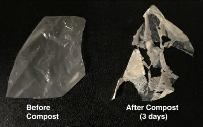 Plastics Disappear Like Magic- But With Science!